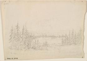 """Lake Encompassed with Coniferous Trees"""