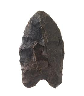 Holcombe projectile point