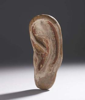 Ear probably from anthropoid coffin