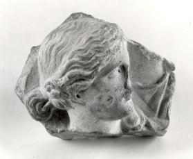 Fragment from an Amazon sarcophagus relief