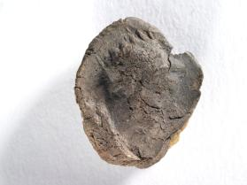 Seal impression of male bust wearing radiate diadem