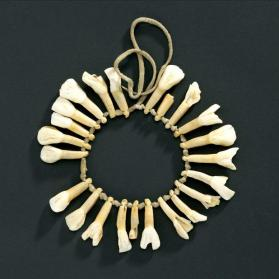 Necklace of cow teeth