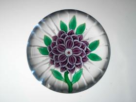 Paperweight, Purple Dahlia