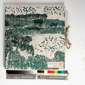 Deluxe edition woodblock portfolio, Walden Pond