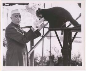 Prime Minister Jawaharlal Nehru with a red panda