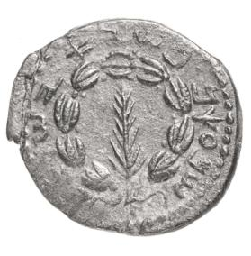 Coin with wreathed palm branch, six-stringed lyre on reverse side