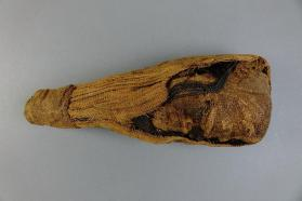 Mummified bird