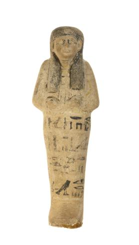 Shabti of Lady of the House Iwy